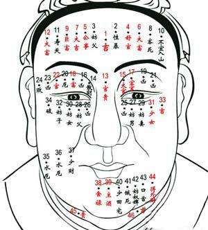 痣的位置与命运图,脸上的痣图解,面相痣图解