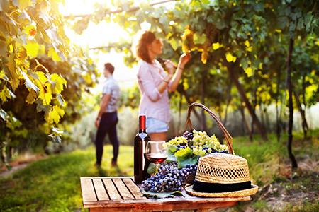 最擅长的_有一种美,叫凌源的秋天 私享老家秋日美景的六种方式,朋友们