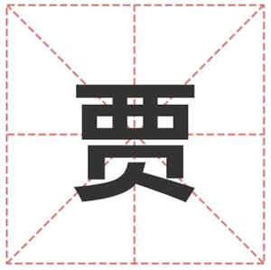 姓贾的名人_姓贾明星(男女明星)