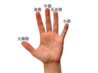 手相分析,手指长短,财运