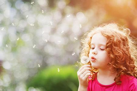 冬吃萝卜夏吃姜 论白萝卜的食疗功效