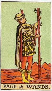 塔罗牌解析:权杖(侍卫)