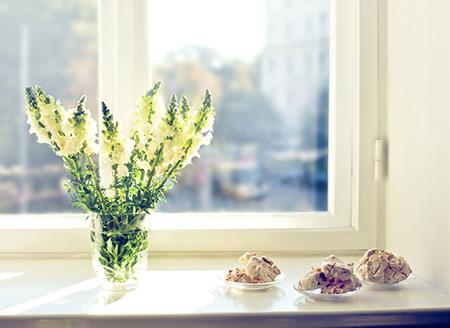 客厅植物,客厅宜放植物