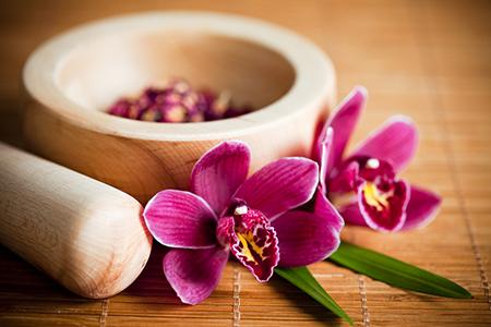 借助鲜花的功效催动你的工作