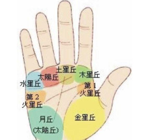 手相,掌丘在手上的部位图