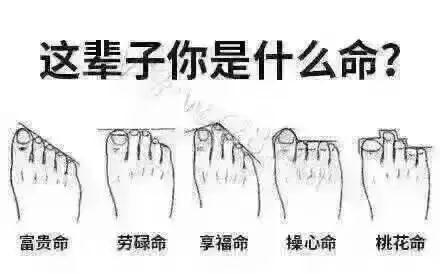体相,脚型