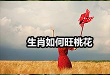 十二生肖旺桃花锦囊